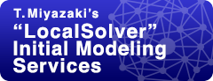 "T. Miyazaki's ""LocalSolver"" Initial Modeling Services"